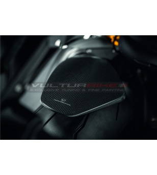 Carbon Heckfender - Ducati Panigale V4 / Streetfighter V4