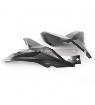PAAR VON CHASSIS PROTECTORS - Ducati Panigale V2 2020