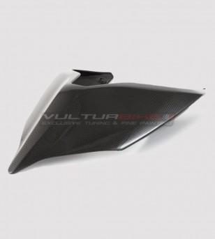 Carbon tail - Ducati Panigale V2 2020 / Streetfighter V4
