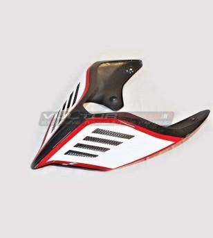Cola de carbono de diseño especial - Ducati Panigale V2 2020 / Streetfighter V4